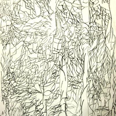 2012 - Chiffonnade Acrylique sur papier 50x65